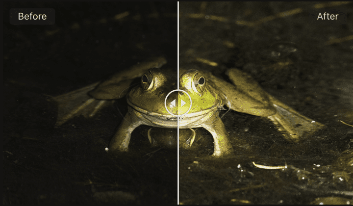 Capture One 20 Pro Before:After Tool